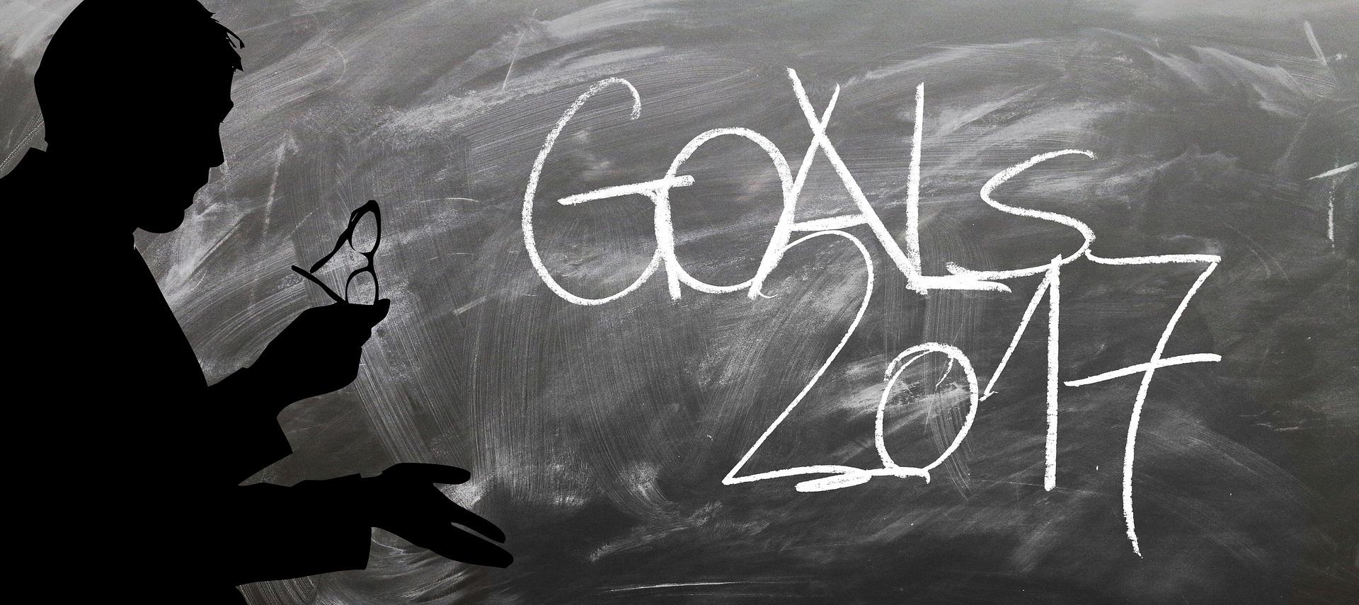 Goals 2017 - Ziele 2017